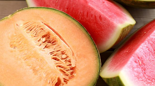 Melons pasteques 2