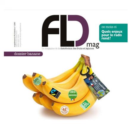 Fld banane carré